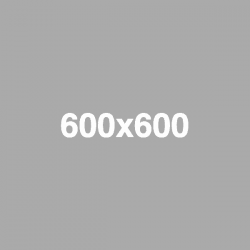 placeholder-600x600